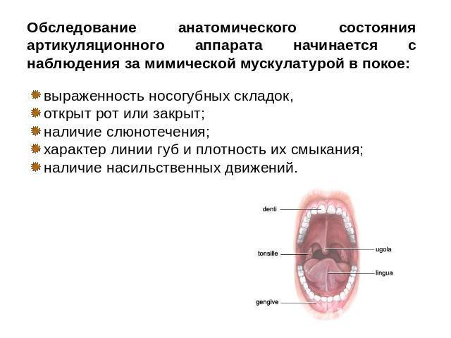 обследование наличие паразитов в организме
