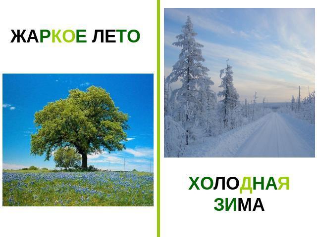не жаркое лето и теплая зима небольшими