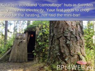 "Kolarbyn woodland ""camouflage"" huts in Sweden may have no electricity. Your firs"