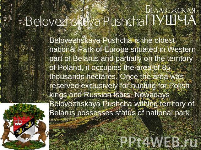 Belovezhskaya Pushcha Belovezhskaya Pushcha is the oldest national Park of Europe situated in Western part of Belarus and partially on the territory of Poland, it occupies the area of 85 thousands hectares. Once the area was reserved exclusively for…