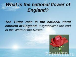 What is the national flower of England? The Tudor rose is the national floral em