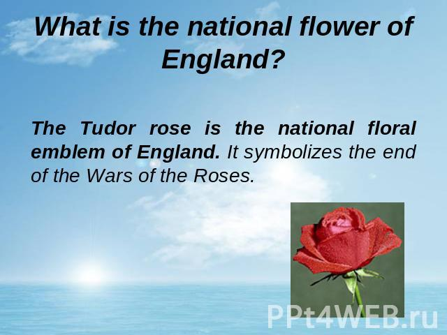 What is the national flower of England? The Tudor rose is the national floral emblem of England. It symbolizes the end of the Wars of the Roses.
