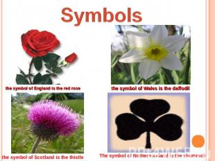 Symbols the symbol of England is the red rose the symbol of Wales is the daffodi