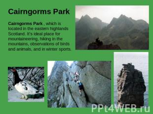 Cairngorms Park Cairngorms Park , which is located in the eastern highlands Scot