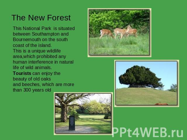 The New Forest This National Park  is situated between Southampton and Bournemouth on the south coast of the island.This is a unique wildlifearea,which prohibited any  human interference in natural life of wild animals. Tourists can enjoy the beauty…