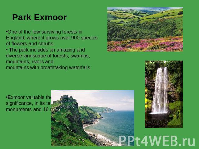 Park Exmoor  One of the few surviving forests in England, where it grows over 900 species of flowers and shrubs. The park includes an amazing and diverse landscape of forests, swamps, mountains, rivers and mountains with breathtaking waterfalls Exmo…