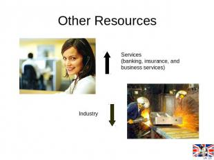 Other Resources Services (banking, insurance, and business services) Industry