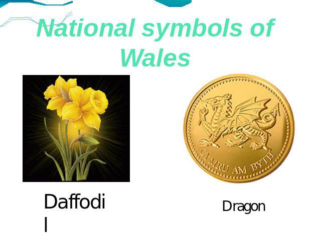 National symbols of Wales Daffodil Dragon