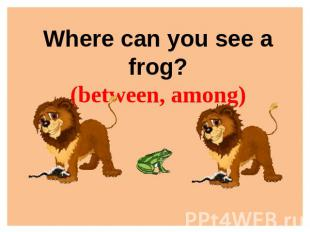 Where can you see a frog?(between, among)