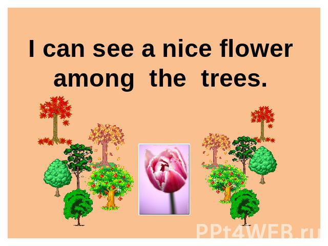 I can see a nice floweramong the trees.