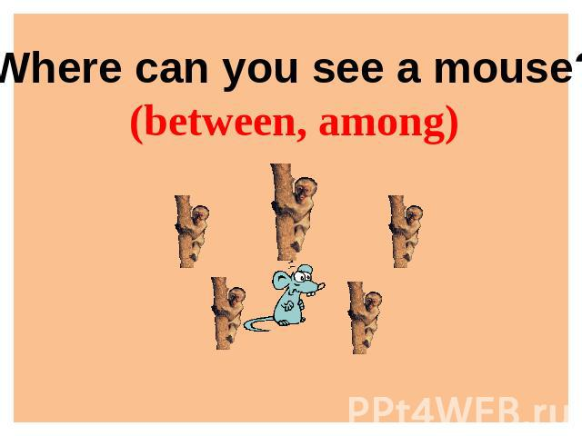 Where can you see a mouse?(between, among)