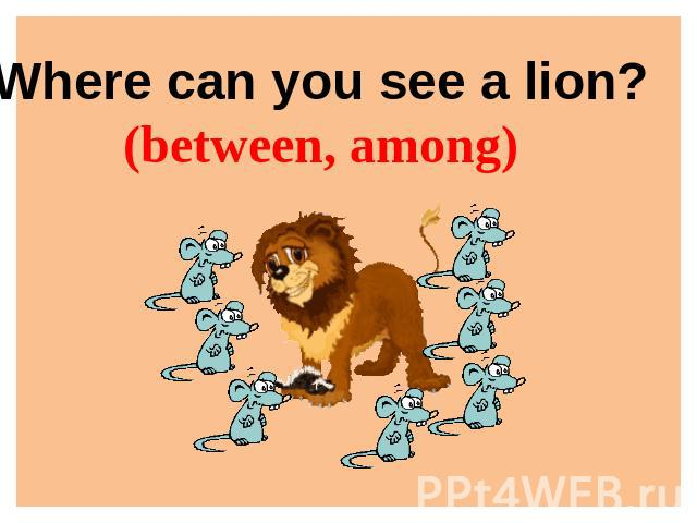 Where can you see a lion?(between, among)