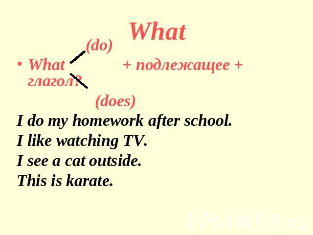 What (do)What + подлежащее + глагол? (does)I do my homework after school.I like watching TV.I see a cat outside.This is karate.