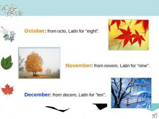 "October: from octo, Latin for ""eight"". November: from novem, Latin for ""nine"". D"