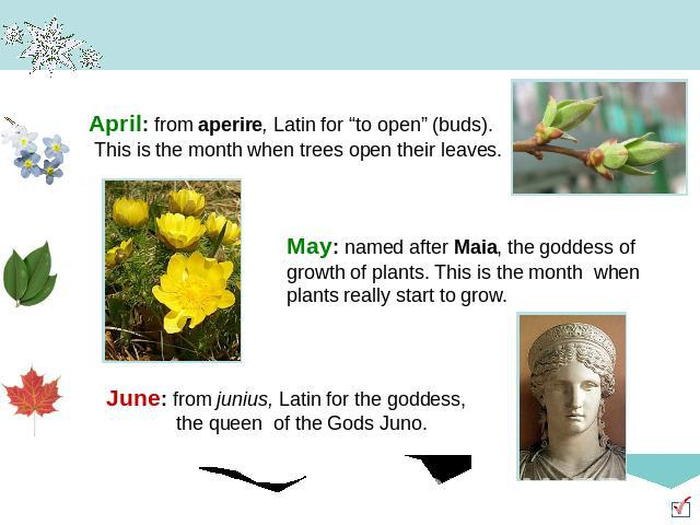 "April: from aperire, Latin for ""to open"" (buds). This is the month when trees open their leaves. May: named after Maia, the goddess of growth of plants. This is the month when plants really start to grow. June: from junius, Latin for the goddess, th…"
