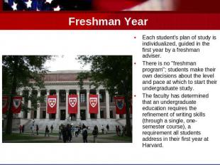 Freshman Year Each student's plan of study is individualized, guided in the firs