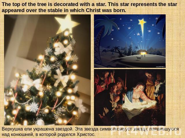The top of the tree is decorated with a star. This star represents the star appeared over the stable in which Christ was born. Верхушка ели украшена звездой. Эта звезда символизирует звезду, появившуюся над конюшней, в которой родился Христос.
