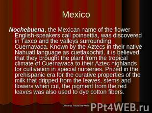 Mexico Nochebuena, the Mexican name of the flower English-speakers call poinsett