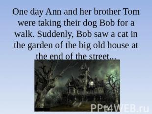 One day Ann and her brother Tom were taking their dog Bob for a walk. Suddenly,