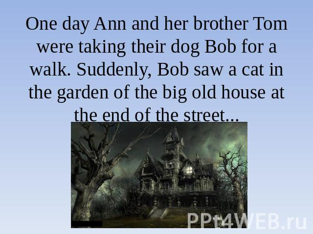 One day Ann and her brother Tom were taking their dog Bob for a walk. Suddenly, Bob saw a cat in the garden of the big old house at the end of the street...