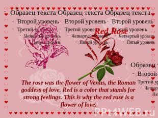 Red Rose The rose was the flower of Venus, the Roman goddess of love. Red is a c