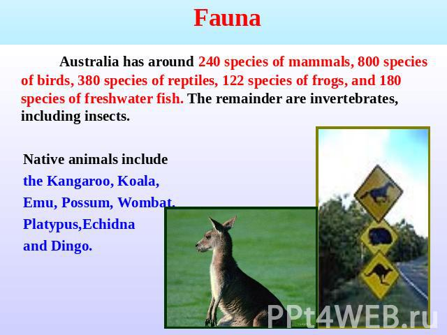 a report on the flora and fauna native to australia The flora and fauna assessment native flora and fauna species referred to as 'threatened' refers to: • conservation status in australia.