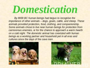 Domestication By 8000 BC human beings had begun to recognise the importance of o