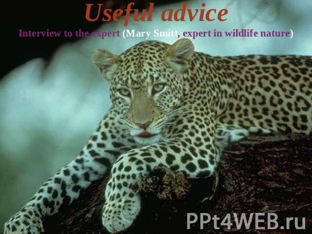 Useful adviceInterview to the expert (Mary Smitt, expert in wildlife nature)