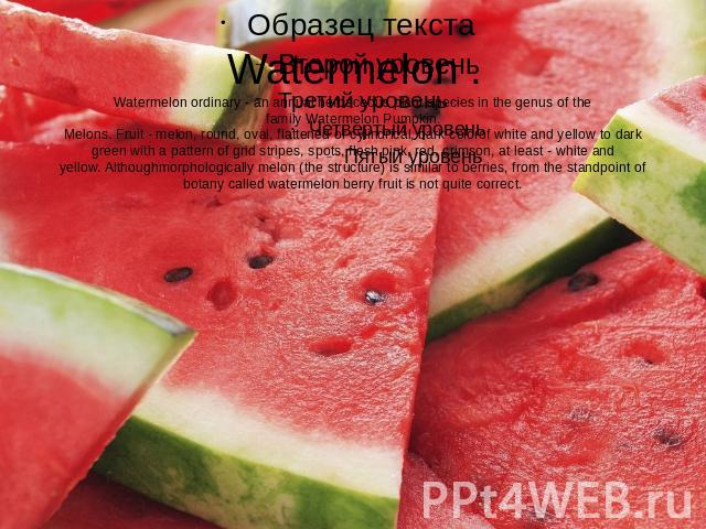 Watermelon .Watermelon ordinary - an annual herbaceous plant species in the genus of the family Watermelon Pumpkin.Melons. Fruit - melon, round, oval, flattened or cylindrical, bark colorof white and yellow to dark green with a pattern of grid strip…