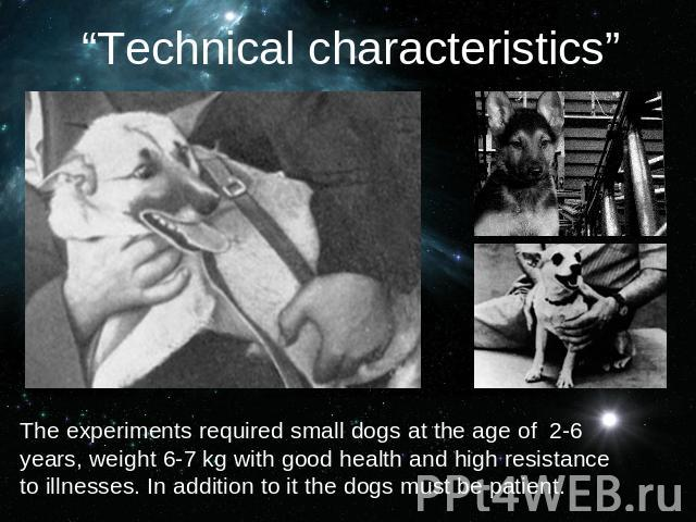 """Technical characteristics""The experiments required small dogs at the age of 2-6 years, weight 6-7 kg with good health and high resistance to illnesses. In addition to it the dogs must be patient."