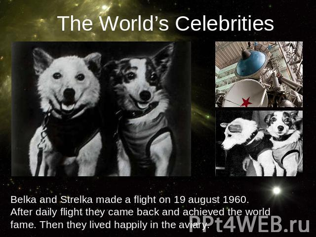 The World's CelebritiesBelka and Strelka made a flight on 19 august 1960. After daily flight they came back and achieved the world fame. Then they lived happily in the aviary.