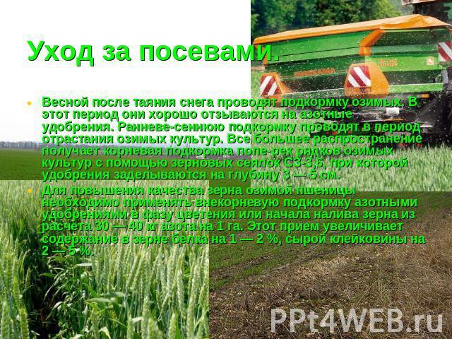 ответы технология возделывания основных полевых культур на семена такой
