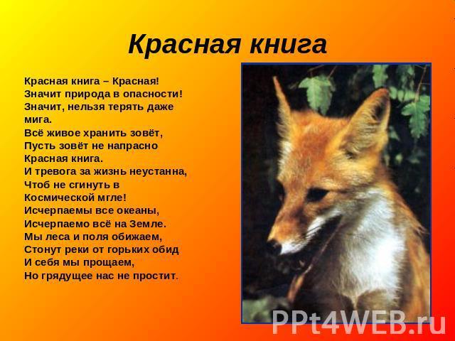 Скачать красная книга животные мира