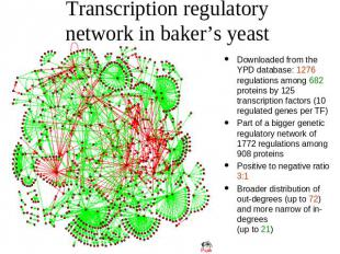 Transcription regulatory network in baker's yeast Downloaded from the YPD databa