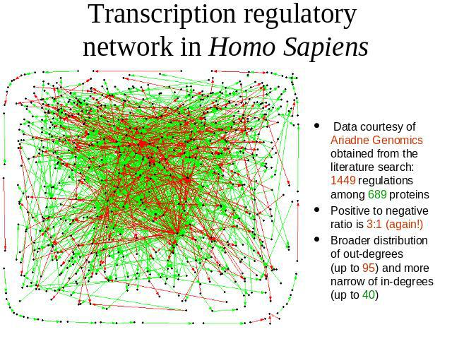 Transcription regulatory network in Homo Sapiens Data courtesy of Ariadne Genomics obtained from the literature search: 1449 regulations among 689 proteins Positive to negative ratio is 3:1 (again!) Broader distribution of out-degrees (up to 95) and…