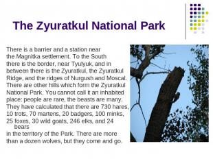 The Zyuratkul National Park There is a barrier and a station near the Magnitka s