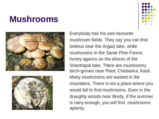 Mushrooms Everybody has his own favourite mushroom fields. They say you can find boletus near the Argazi lake, white mushrooms in the Sanar Pine-Forest, honey agarics on the shores of the Shantrapai lake. There are mushroomy birch-groves near Plast,…