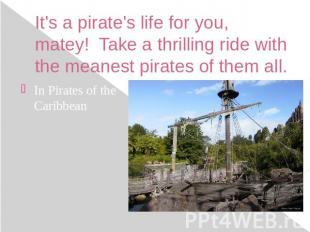 It's a pirate's life for you, matey!  Take a thrilling ride with the meanes