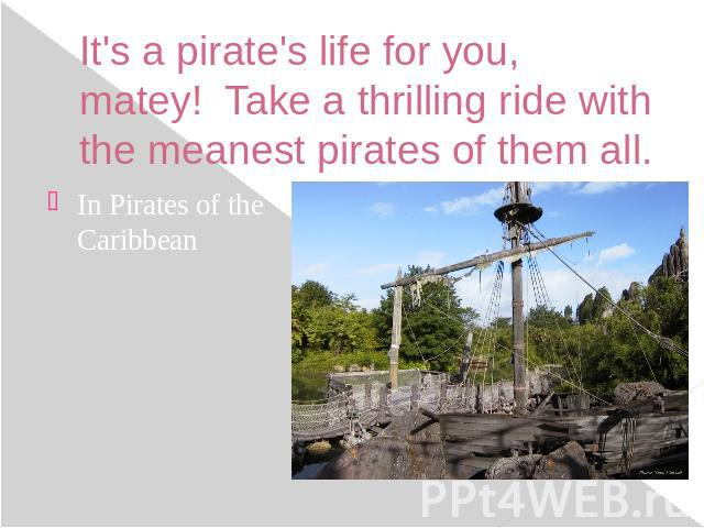 It's a pirate's life for you, matey!  Take a thrilling ride with the meanest pirates of them all. In Pirates of the Caribbean