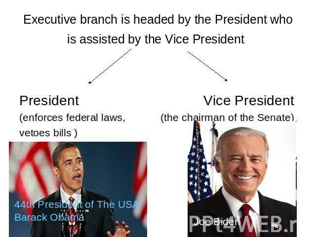 Executive branch is headed by the President who is assisted by the Vice President President Vice President (enforces federal laws, (the chairman of the Senate) vetoes bills ) 44th President of The USA Barack Obama Joe Biden