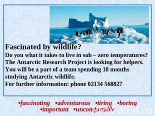 Fascinated by wildlife?Do you what it takes to live in sub – zero temperatures?T