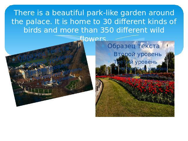 There is a beautiful park-like garden around the palace. It is home to 30 different kinds of birds and more than 350 different wild flowers.