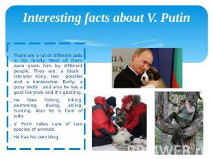 Interesting facts about V. Putin There are a lot of different pets in his family