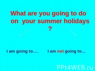 What are you going to do on your summer holidays ? I am going to…. I am not goin