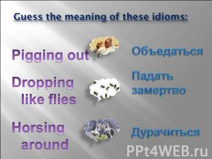 Guess the meaning of these idioms: Pigging out Dropping like flies Horsing aroun