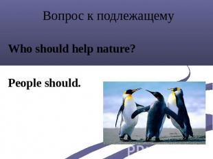 Вопрос к подлежащему Who should help nature? People should.