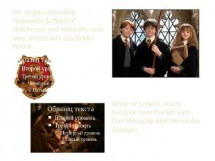 He began attending Hogwarts School of Witchcraft and Wizardry and was sorted int