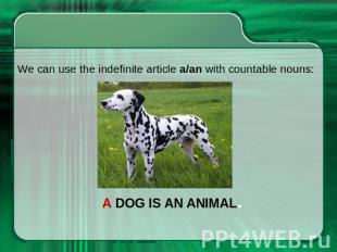 We can use the indefinite article a/an with countable nouns: A dog is an animal.