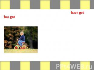 Look at the pictures and write sentences with have got or has got. Then write ne