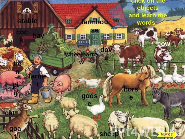 Click on the objects and learn the words stable cock hay hen farmer pig cat goat farmhouse dove wheelbarrow goose sheep cow horse NEXT